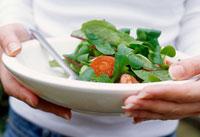 Hands holding plate of green salad 22199040874| 写真素材・ストックフォト・画像・イラスト素材|アマナイメージズ