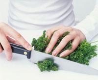 Chopping curled parsley 22199040883| 写真素材・ストックフォト・画像・イラスト素材|アマナイメージズ