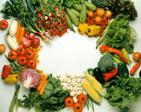 Various types of vegetables laid