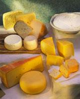 Still life with various types of cheese 22199042521| 写真素材・ストックフォト・画像・イラスト素材|アマナイメージズ