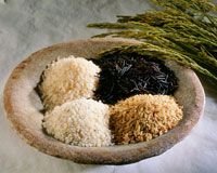 Four different types of rice in a bowl 22199043009| 写真素材・ストックフォト・画像・イラスト素材|アマナイメージズ
