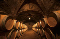 Wooden barrels in Santa Rita wine cellar