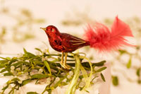 Red glass bird on a parcel decorated