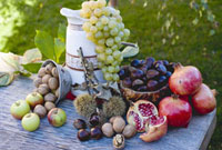 Grapes,pomegranates,sweet chestnuts,apples and nuts