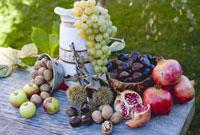 Grapes,pomegranates,sweet chestnuts,apples and nuts 22199048264| 写真素材・ストックフォト・画像・イラスト素材|アマナイメージズ