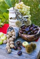 Grapes,sweet chestnuts,apples and nuts