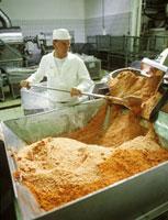 Technician at belt drier with tomato powder 22199052109| 写真素材・ストックフォト・画像・イラスト素材|アマナイメージズ