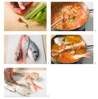 Making brodetto di pesce (mixed fish stew),Italy
