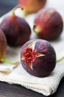 Figs 22199056643  写真素材・ストックフォト・画像・イラスト素材 アマナイメージズ
