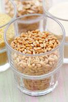 Grains of wheat 22199056757| 写真素材・ストックフォト・画像・イラスト素材|アマナイメージズ