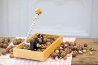 Macadamia nuts with nutcracker 22199056799| 写真素材・ストックフォト・画像・イラスト素材|アマナイメージズ