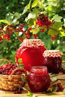 Jam in various jars under redcurrant bush 22199056962  写真素材・ストックフォト・画像・イラスト素材 アマナイメージズ