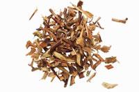 Thorns of Chinese honey locust (Gleditsia sinensis)