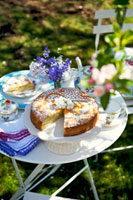 Apple cake on small table in garden