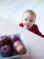 Toddler looking at apples on dining table