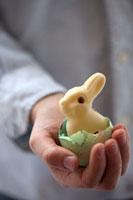 Child�fs hand holding Easter Bunny in eggshell