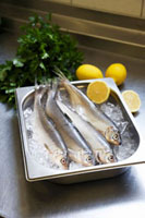 Fresh fish on ice,lemons,parsley
