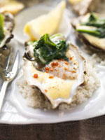 Oysters on spinach with spicy hollandaise sauce