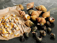 Whelks and winkles