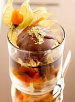 Vanilla ice cream with chocolate sauce�Cgold leaf & physali