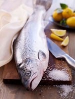 Whole salmon,salt and lemons on chopping board