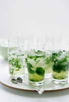 Mint Julep (Cocktail made with bourbon and mint)