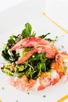 Fresh Lobster Salad with Chunk Lobster and a Whole Claw 22199063505| 写真素材・ストックフォト・画像・イラスト素材|アマナイメージズ