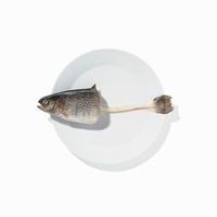 Half a trout with its tail on a white plate