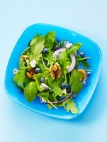 Mixed leaf salad with nuts, onions and blueberries, seen fro 22199067347| 写真素材・ストックフォト・画像・イラスト素材|アマナイメージズ