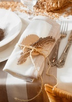 A Easter place setting: serviette decorated with a feather
