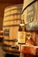Bottle and Glass of White Wine on Wine Barrel
