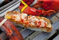 Lobster Roll on Toasted Bun with Lobster and Lobster Trap; H