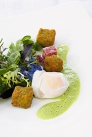 Poached egg with a herb salad and baked brawn
