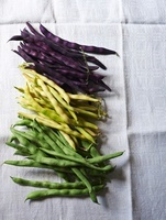 Green, yellow and purple bush beans