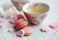 Green teas with macaroons and sugar flower rakugan (Japanese