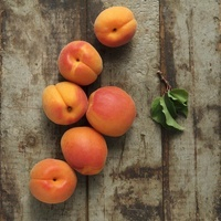Fresh Apricots on Rustic Wood Table