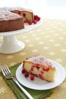 Slice of Cranberry Cornmeal Cake on a Plate; Cake on Cake St
