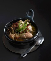 Bowl of Chicken Fricassee