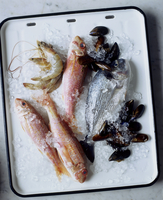 Fish and seafood on ice