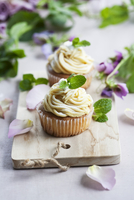 Peppermint cupcakes 22199074310  写真素材・ストックフォト・画像・イラスト素材 アマナイメージズ