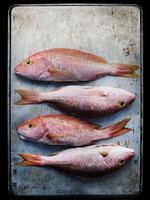 Four Whole Red Snappers on a Sheet Pan
