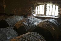 Old Cognca barrels (Domaine Grollet, France)