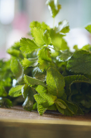 Fresh mint and coriander