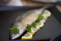 Mackerel with parsley and lemons on a baking tray
