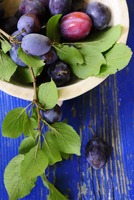 Damsons with leaves in a bowl