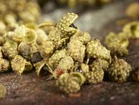 Green Szechuan pepper