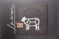 A sketch of a lamb, a label and writing on a chalkboard