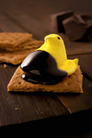Easter S'more; Peep Dipped in Chocolate on a Graham Cracker
