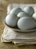 A Dish of Blue Eggs 22199075629| 写真素材・ストックフォト・画像・イラスト素材|アマナイメージズ