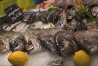 Bream at a fish market
